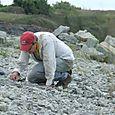 2008 Lonestar Quarry  #5