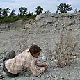 2008 Lonestar Quarry  #7