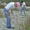 2008 Lonestar Quarry  #6