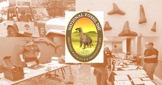 National Fossil Day_2015_FB2