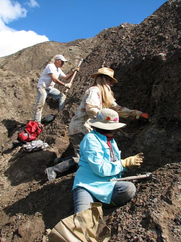 18. Braceville fossil collecting, ESCONI, 9-10-16