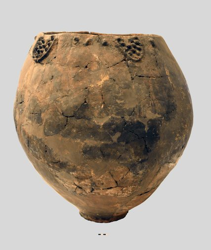 8000 Year Old Wine