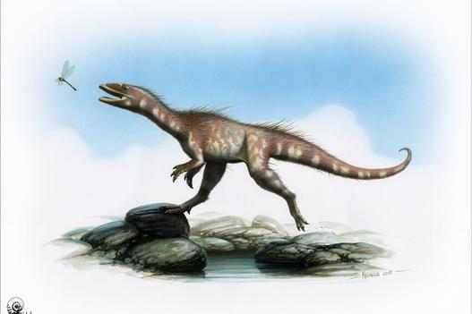 Welsh T-rex cousin