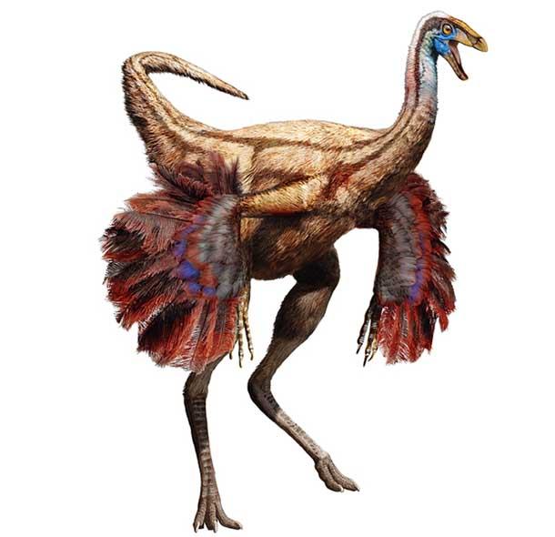 Ornithomimid-dinosaur