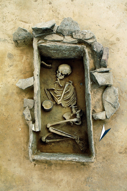 24ZIMMER ancient DNA