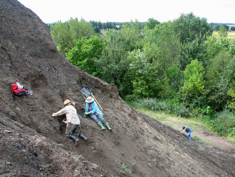 11. Braceville fossil collecting, ESCONI, 9-10-16