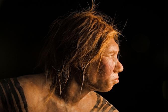 01_neanderthal_denisova_child_nationalgeographic_1190346.adapt.676.1