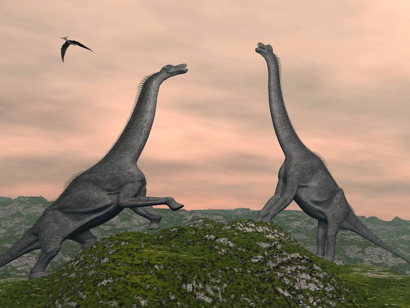 Brachosaurs at sunset
