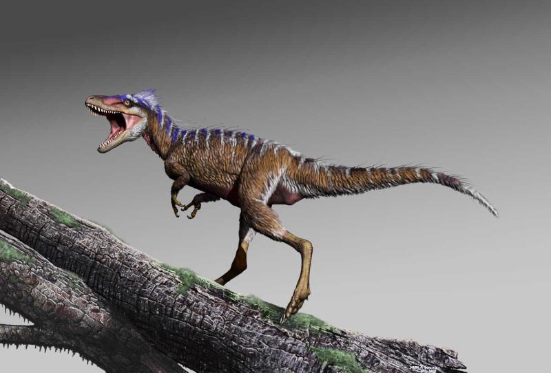 Tiny-tyrannosaur