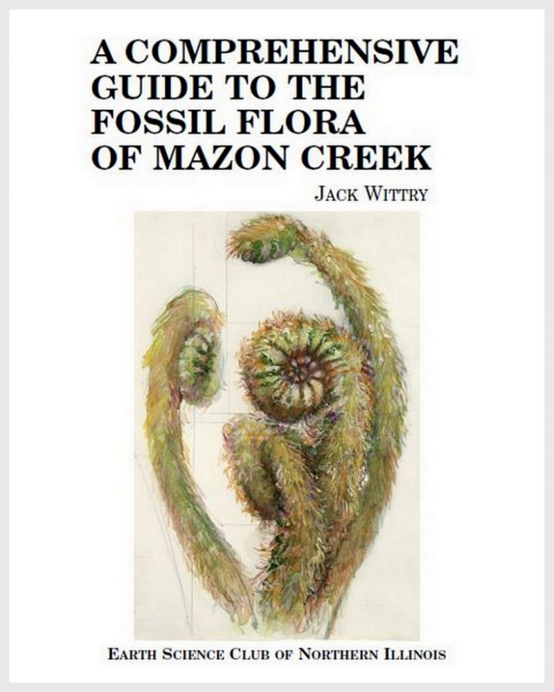 2. A Comprehensive Guide to the Flora of Mazon Creek  Wittry 2019 book cover  5-1-19