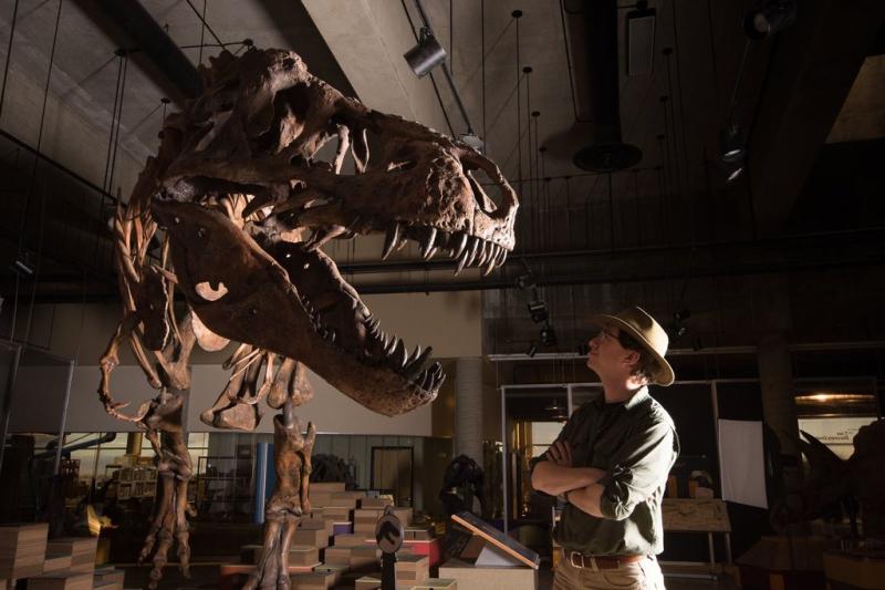 Scotty t-rex