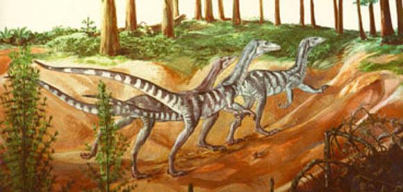 Image_7521-Chindesaurus