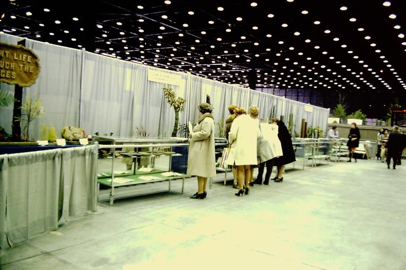 K-14_Plant Life Through The Ages_ESCONI_3-21-1971