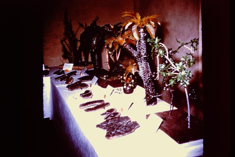 Slide 16_Plant Life at Muskegon-1964