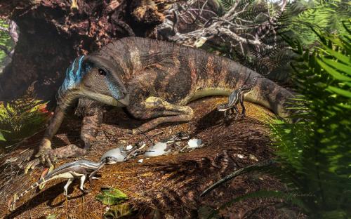 Image_7942e-Weewarrasaurus-pobeni
