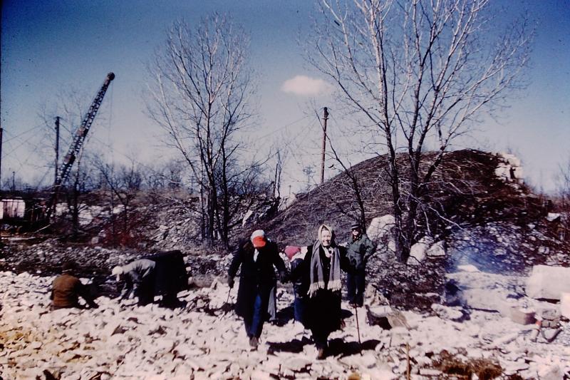 13_Lemont  IL Quarry  trilobites_1952