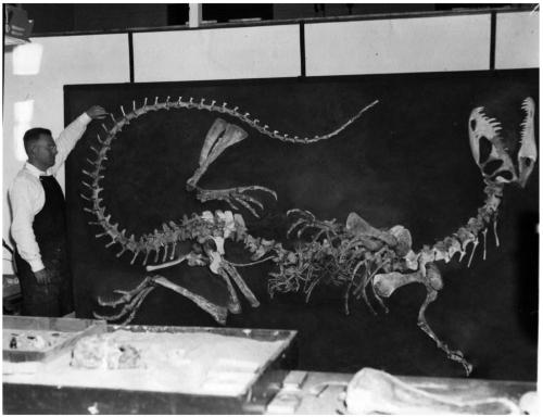 Langstondilophosaurus.adapt.1900.1