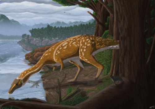Image_8440_1-Elaphrosaur