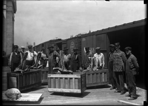Move 1920