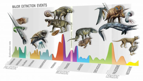 Major-Extinction-Events-777x444
