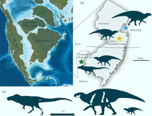 Image_10006-Appalachian-Dinosaurs