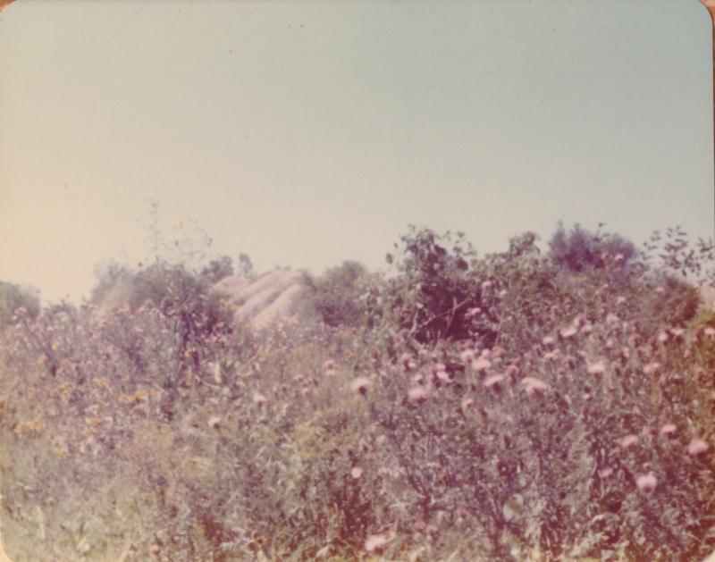 Morris  IL_Sept-1976-e