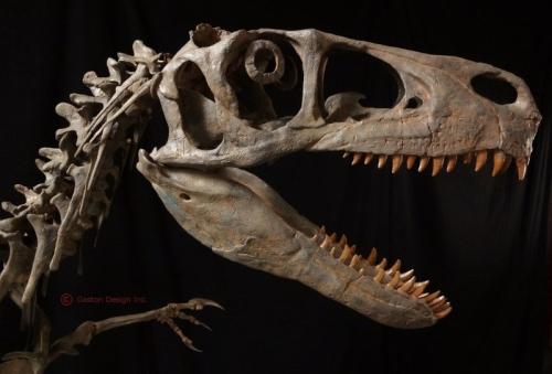 Utahraptor-