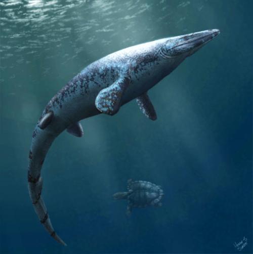 Image_10012_1-Angolasaurus-bocagei