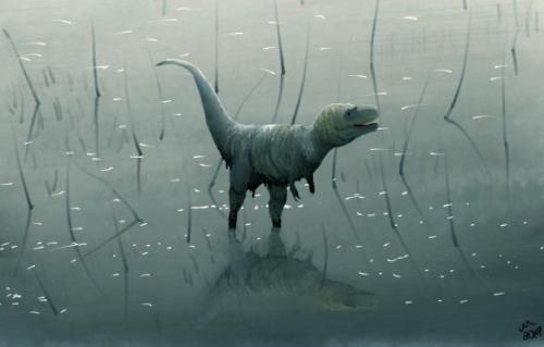 Image_7975-Tyrannosaurus-rex-Juvenile