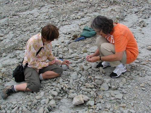 2008 Lonestar Quarry  #4