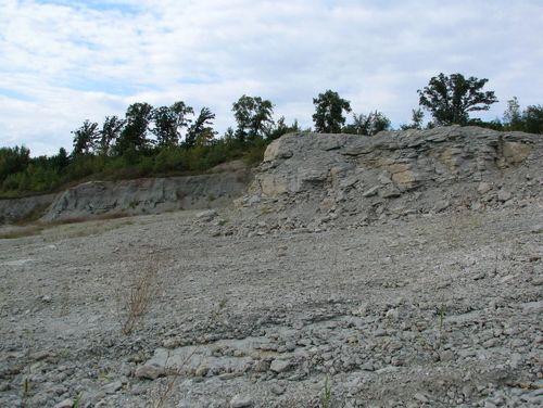 2008 Lonestar Quarry  #11