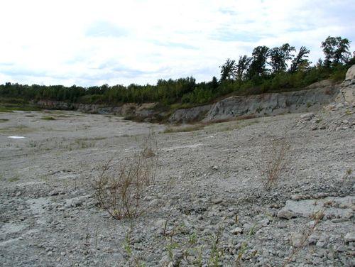 2008 Lonestar Quarry  #12