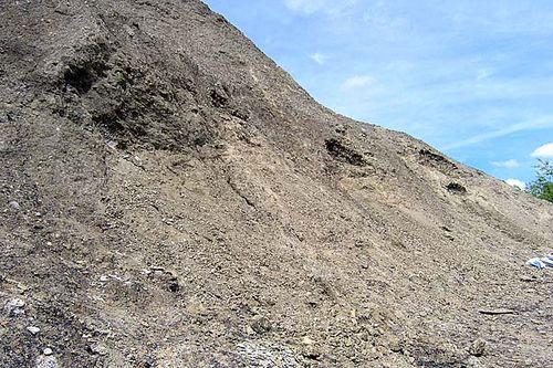 Braceville Hill