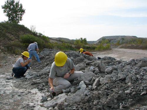 Larson/Vulcan Quarry, 9-19-09  #5
