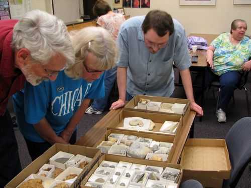 Paleontology Meeting about Silurian